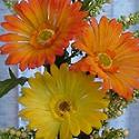Katies Flowers Splendid Flowers and Unforgettable Bouquets for Precious Memories